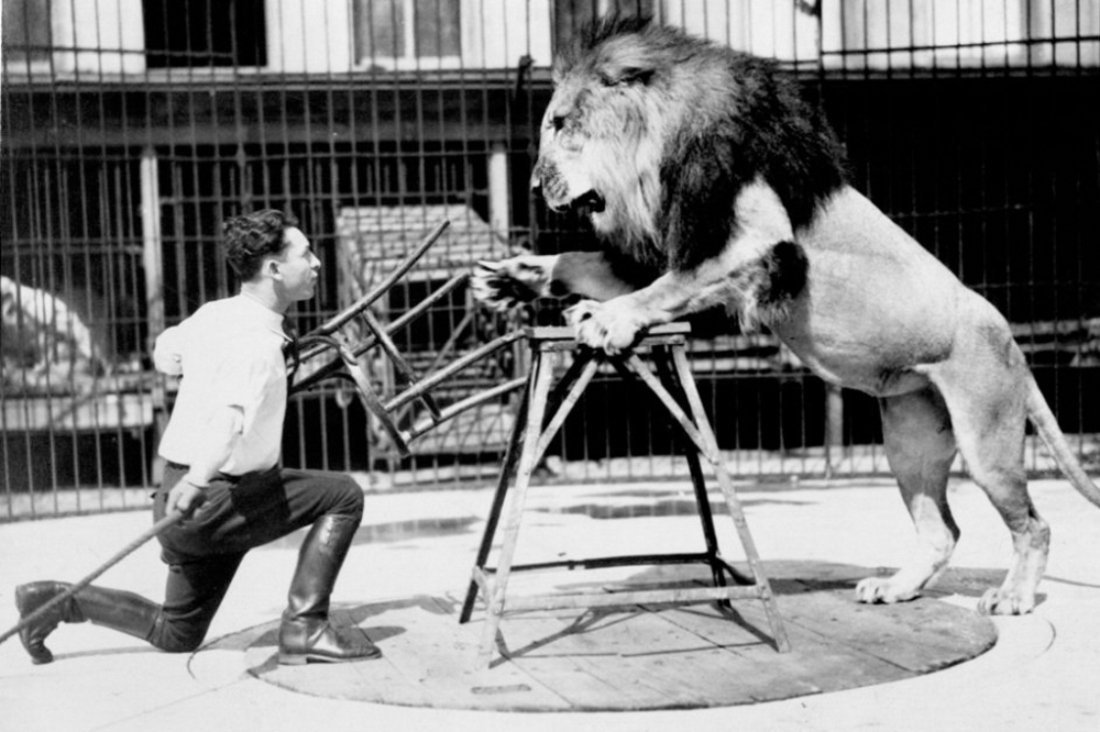 clyde-beatty-lion-tamer